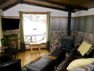 Family Ski Haus Free shuttes to skiing - Sleeps 6+ - Breckenridge vacation rentals