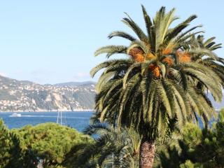 La Palma - Heart of the Italian Riviera - Liguria vacation rentals