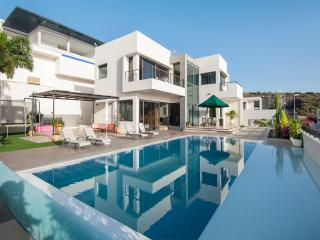 6 Bedroom Private Villa With Garden & Heated Pool - Adeje vacation rentals