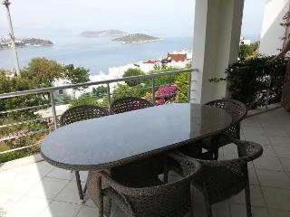 Full seaview 2 bedroom apartment for 4  (CDG2) - Yalikavak vacation rentals