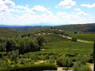 Cozy house with stunning view of Chianti hills. - San Gusme vacation rentals