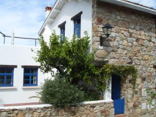 Lovely 3 bedroom House in Figueiro dos Vinhos with Internet Access - Figueiro dos Vinhos vacation rentals
