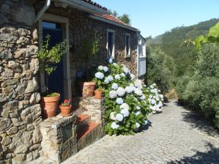 Beautiful House in Figueiro dos Vinhos with Internet Access, sleeps 8 - Figueiro dos Vinhos vacation rentals