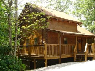 BEAR CUB - Tennessee vacation rentals