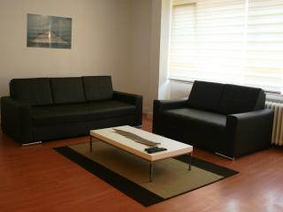 3BR Large Luxury Home in Osmanbey - Istanbul vacation rentals