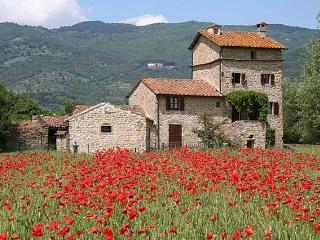 Charming Cortona villa with private pool (Dardano) - Cortona vacation rentals
