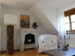 Nice Condo with Internet Access and Dishwasher - Vogtsburg im Kaiserstuhl vacation rentals