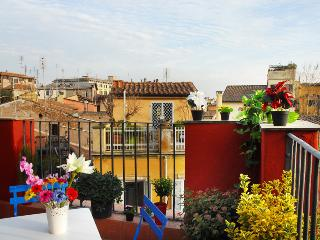 Wonderful terrace in the hearth of Rome - Rome vacation rentals