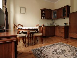 Cozy 1 bedroom Gdansk Apartment with Television - Gdansk vacation rentals
