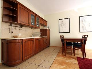 Cozy Condo with Washing Machine and Stove in Gdansk - Gdansk vacation rentals