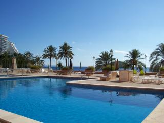 Magaluf beach x 5 people - Magalluf vacation rentals