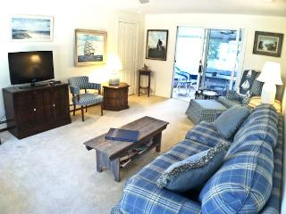 Quiet lovely area with short drive to Bank St. Beach, sleeps 6, enclosed sunroom & A/C - HA0573 - Harwich vacation rentals