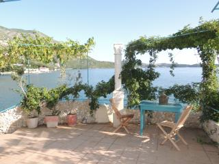 Studio Robinzon Flora & Fauna -  Studio with Terrace and Sea View - Plat vacation rentals