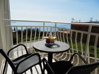 Villa Samba - One-Bedroom Apartment with Balcony and Sea View Aprt. 5 (2+2) - Plat vacation rentals
