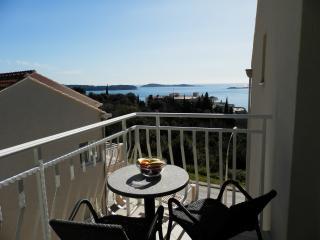 Villa Samba- One-Bedroom Apartment with Balcony and Sea View Aprt. 6 (2+2) - Plat vacation rentals
