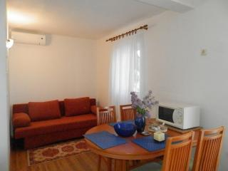 Apartments Zuronja-One-Bedroom Apartment with Sea View 1 - Janjina vacation rentals