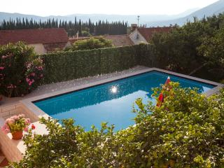 Villa Mateo - Three-Bedroom Apartment with Terrace and Private Pool - Dubravka vacation rentals