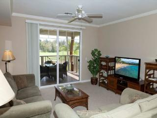 Gorgeous House with Parking and Hot Tub - Waikoloa vacation rentals