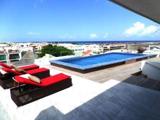 Skyline 24 - Condo 202 - Playa del Carmen vacation rentals