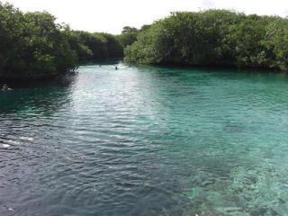 Casa Corazon Studio Tulum Beach - Punta Allen vacation rentals