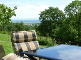 Sea View Lodge - Dawlish vacation rentals