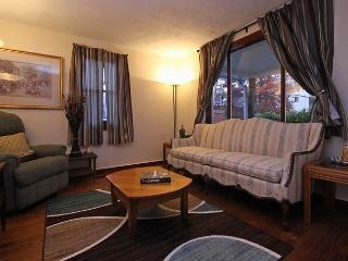 Couples Retreat in West Asheville - Asheville vacation rentals