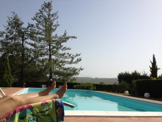 Fungo - Lucignano vacation rentals