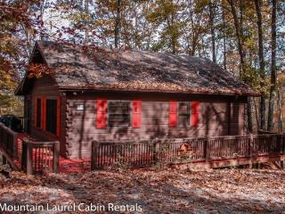 BULLWINKLE`S BUNGALOW*COZY TWO BEDROOM~ONE BATH CABIN WITH GREAT MOUNTAIN VIEWS~GAS GRILL~WIFI~SCREENED PORCH WITH PRIVATE HOT T - Blue Ridge vacation rentals