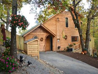 Bearfoot Cabin - Pigeon Forge vacation rentals