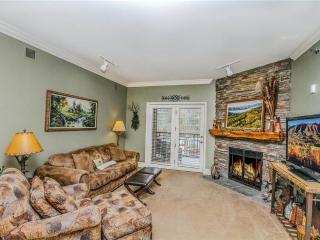 Baskins Creek 310 - Gatlinburg vacation rentals