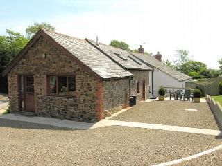 2 bedroom House with Internet Access in Pyworthy - Pyworthy vacation rentals