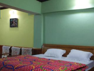 HIMADRI GUEST HOUSE SHITLAKHET ALMORA - Rudrapur vacation rentals