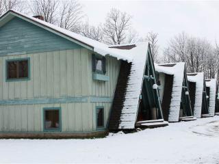 Dragon's Lair - Upper Peninsula Michigan vacation rentals
