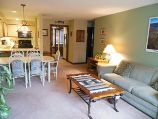 Sunrise Village West Glade L5 - Two bedroom ski in/ski out condo with access to Health Club - Lake Champlain Valley vacation rentals