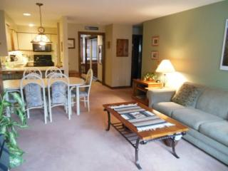 Sunrise Village West Glade L5 - Two bedroom ski in/ski out condo with access to Health Club - Sherburne vacation rentals