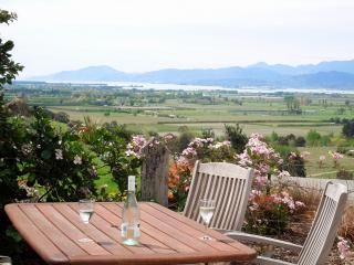 Relax with the best view in Nelson and a pool! - Richmond vacation rentals