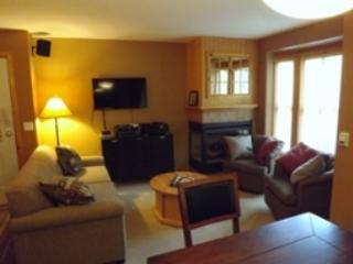 Living - Crystal Forest Condos - 07 - Sun Peaks - rentals