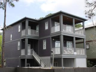 Aspen Beach House - Grayton Beach vacation rentals