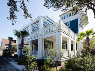 Comfortable 5 bedroom Alys Beach House with Internet Access - Alys Beach vacation rentals