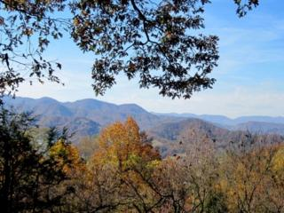 Above The Clouds – World Class Views!  Neat as a pin, within 20 min. of Biltmore Estate - Leicester vacation rentals