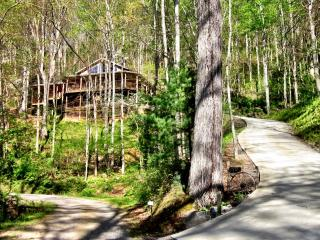 Asheville Chalet – Waterfall right off deck, hot tub, hiking, sleeps up to 8 - Asheville vacation rentals