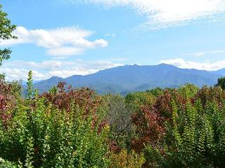 Private estate with spectacular views - Gatlinburg vacation rentals