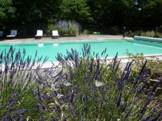 Mas le Clos des Mûriers, gite de charme - St Jean de Crieulon vacation rentals