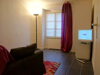 Cosy studio few steps from Paris - Charenton-le-Pont vacation rentals