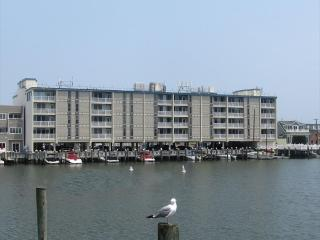 351 96th Street in Stone Harbor, NJ - ID 712396 - Stone Harbor vacation rentals