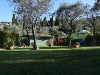 il rifugio tra gli ulivi     pace e tranquillità - Santa Margherita Ligure vacation rentals