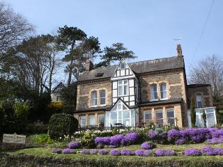 Contemporary Victorian Gentlemens Residence - Ilfracombe vacation rentals