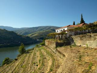 Quinta Amarela - Situated near Douro river - Pinhao vacation rentals