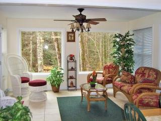 Beautiful Cabin w/Creek in City Limits of Helen Near Innsbruck Golf Resort - Helen vacation rentals