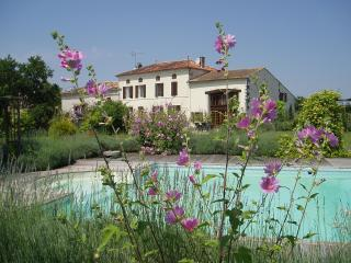 Bright 6 bedroom Pons Gite with Internet Access - Pons vacation rentals